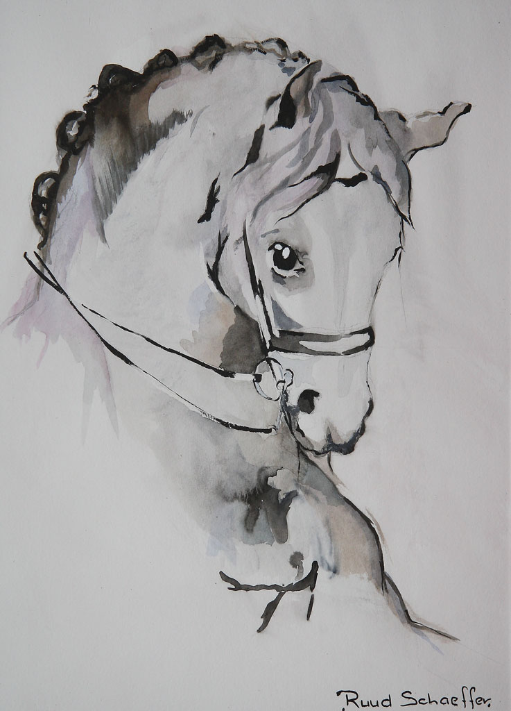 PaardenhoofdB